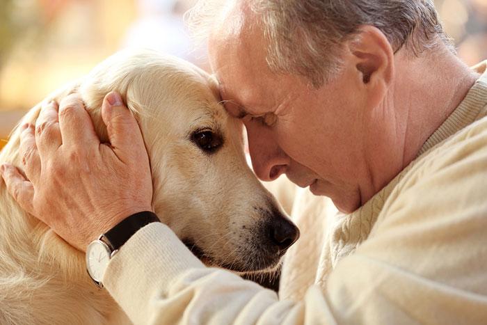 飼い主が死んでも大丈夫。あなたは「ペット信託」を知ってますか?=小櫃麻衣
