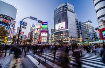 Sira Anamwong / Shutterstock.com